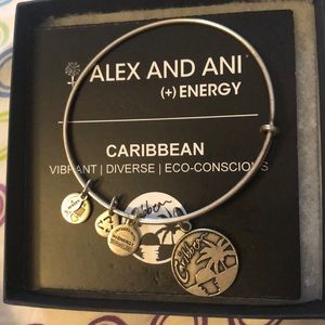 Never worn Alex And Ani dangle bracelet